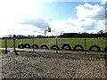 TM3692 : Ellingham Recreation Ground by Geographer