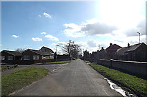 TM3792 : Mill Lane,Kirby Cane by Adrian Cable