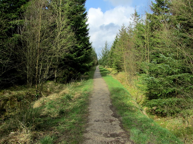 Cocklet Hill, Gisburn Forest