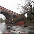 SJ9694 : Godley Arches by Gerald England