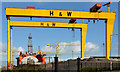 "J3575 : The ""Blackford Dolphin"", Harland & Wolff, Belfast - March 2014(2) by Albert Bridge"
