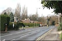 TQ1557 : Randalls Road traffic lights by Hugh Craddock