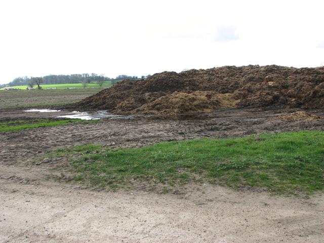 Muck heap in field by Earsham Park Farm