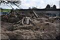 SN0902 : Pembrokeshire : Manor House Wildlife Park - Meerkat Enclosure by Lewis Clarke