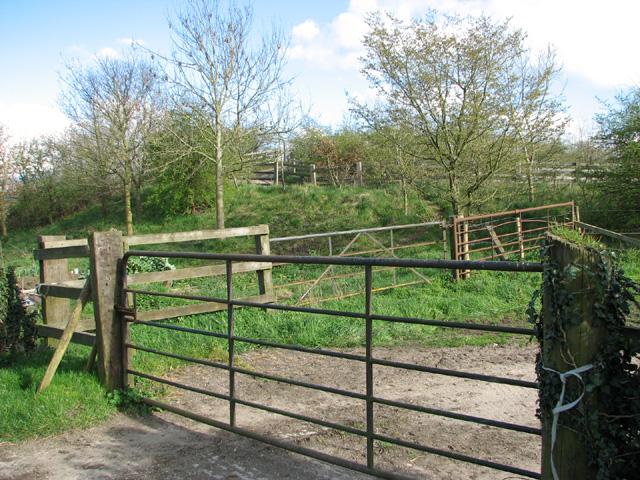 Farm bridge by Low Farm