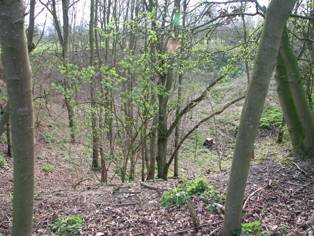 Disused pit
