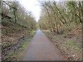 ST1385 : Ffordd Geltaidd / Celtic Trail by Alan Richards