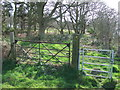 TM2741 : Two Gates by Keith Evans