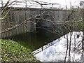 SU4885 : Water in the Underpass by Bill Nicholls
