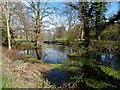 SU9099 : River Misbourne by Bikeboy