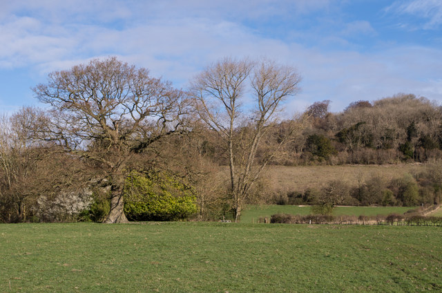 Towards Dawcombe