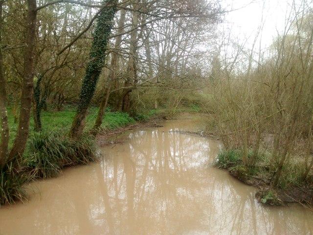 Stream through Lydiard Park