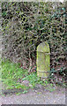 SK5141 : Boundary marker at Strelley by Alan Murray-Rust
