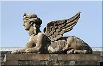 NT6779 : The Lauderdale House Sphinx at Dunbar by Walter Baxter