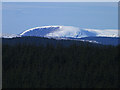 NT4323 : Snowy summit seen from Wollrig by Oliver Dixon