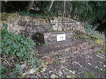 ST5294 : Piercefield Park alcove by Paul Brooker