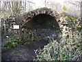 ST5395 : Piercefield Park Grotto by Paul Brooker