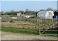 TM2582 : Allotment gardens beside the A143 road by Evelyn Simak