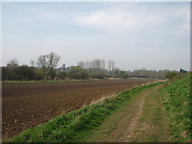 TL5234 : Towards Newport on Bromley Lane by John Sutton