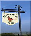 SE7663 : Scalla Moor Farm sign by Pauline E