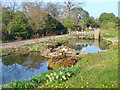 TQ0658 : Wisley - Rock Garden Ponds by Colin Smith
