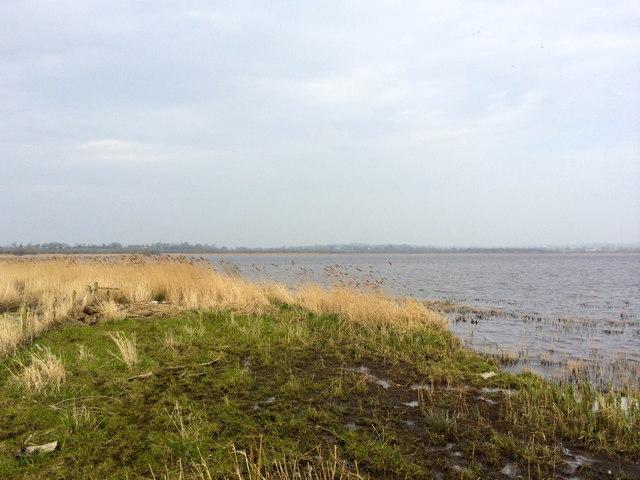 Shore of Portmore Lough