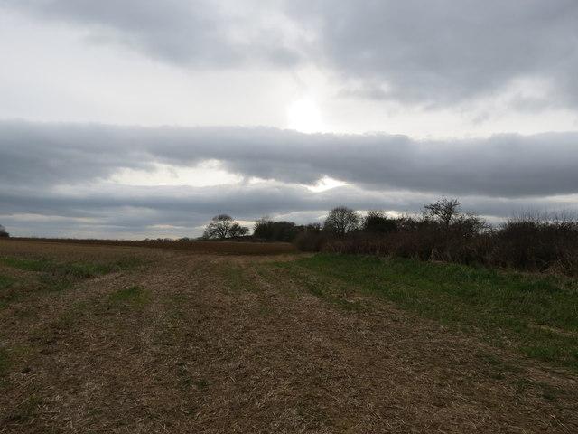 Stubble  field  Coney  Hills  toward  Tumuli