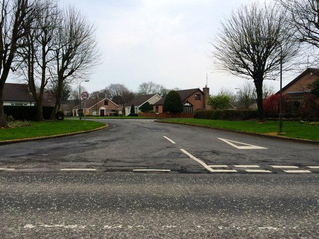 Entrance to Drumglass, Craigavon