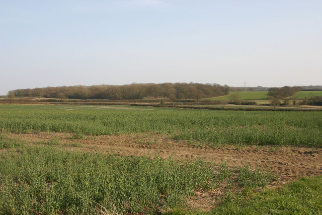 North Bedfordshire countryside