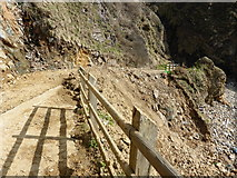 SM7624 : The path at Caerfai Bay near St. David's in March 2014 by Jeremy Bolwell