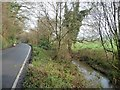 SX9094 : Exwick leat, alongside St Andrew's Road by Christine Johnstone