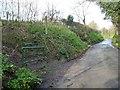 SX8993 : Exwick Lane at Dukes Walk by Christine Johnstone