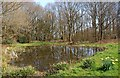 SO7978 : The village pond at Trimpley (1), Worcs by P L Chadwick
