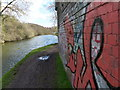 SP5598 : Graffiti along the Grand Union canal by Mat Fascione