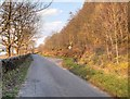 NM8328 : Gallanach Road, Passing Place by David Dixon