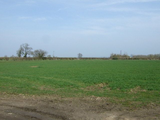 Farmland off Gilmorton Road by JThomas