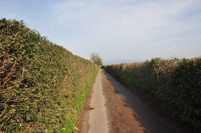 Mid Devon : Knowle Lane