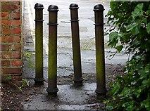 NZ2465 : A group of bollards by David Clark