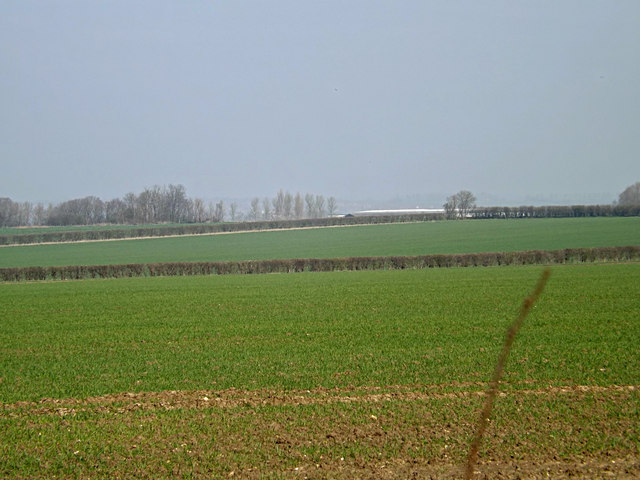 Looking towards Bear Croft Farm