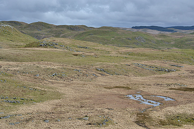 Classic Elenydd landscape