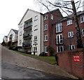 ST1380 : Cwrt Brynteg, Radyr, Cardiff  by Jaggery