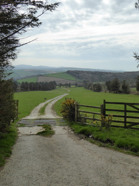 The driveway to Little Trewithen