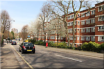 TQ2784 : Primrose Hill Road, London NW3 by Kate Jewell