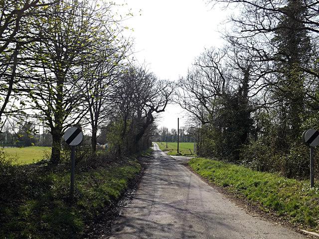 Chapple Lane, Forward Green