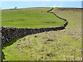 SX6980 : Boundary Wall on Challacombe Down by Tony Atkin