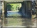 SU5885 : Flooding under the Bridge by Bill Nicholls