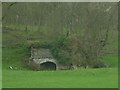 SD5378 : Disused lime kiln, Curwen Woods by Karl and Ali