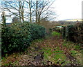 ST4490 : Bridleway near Orchard Cottage, Five Lanes by Jaggery