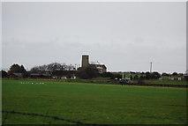 TG1743 : Church of All Saints, Beeston Regis by N Chadwick