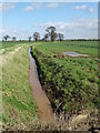 SE7128 : A field drain - Asselby Marsh by Neil Theasby